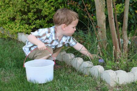 Owen Hunting Easter Eggs